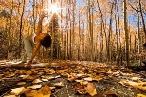 Yogini Ally Nguyen (Asian/American female, late twenties) performs yoga (Revolved Triangle Pose) amid autumn aspen trees, Little Cottonwood Canyon, Salt Lake City, Utah USA.